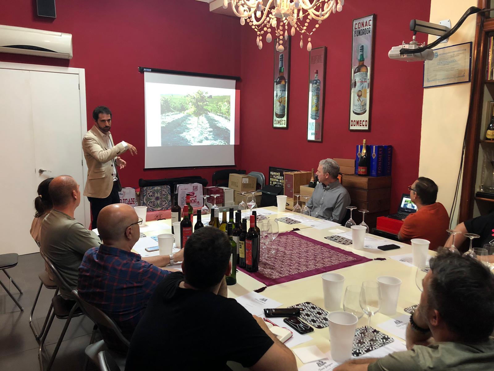 cata de vinos Montilla-Morile