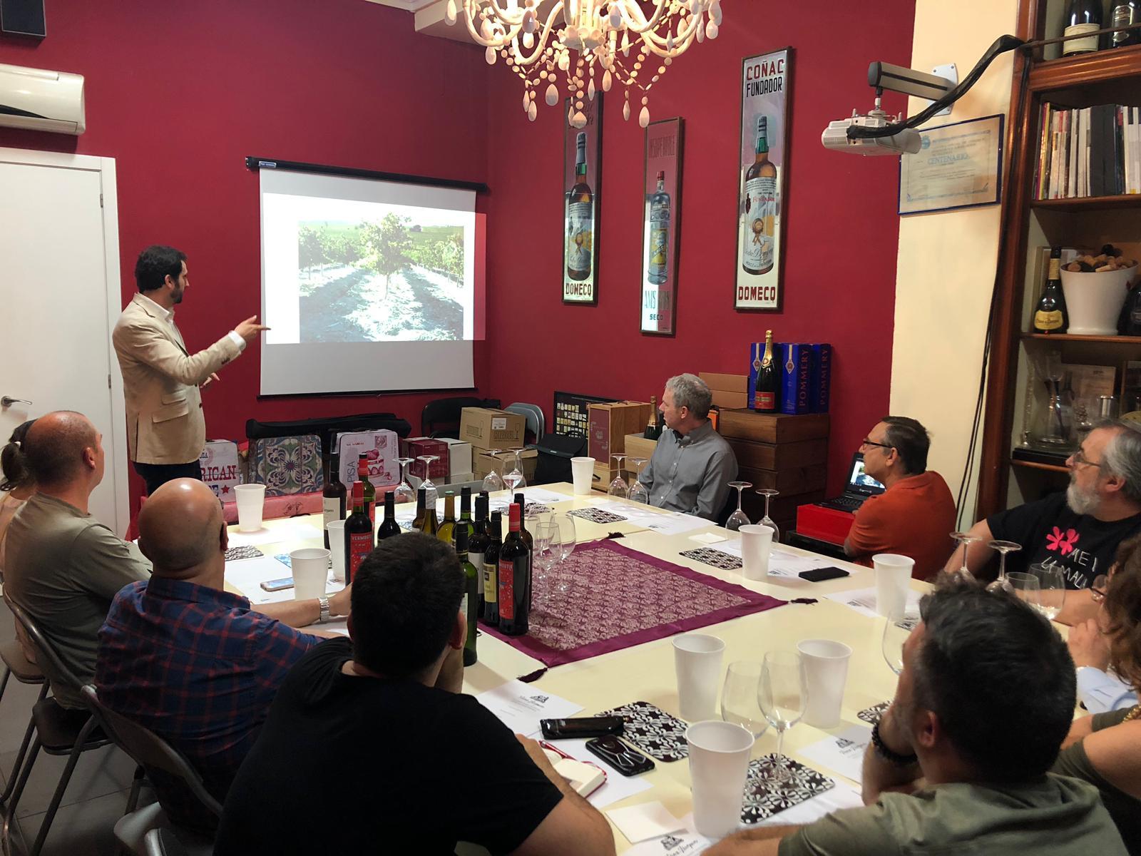 cata de vinos Montilla-Moriles