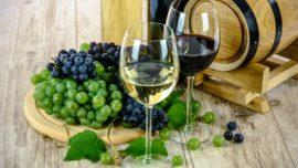 mejores vinos por debajo de 5 euros