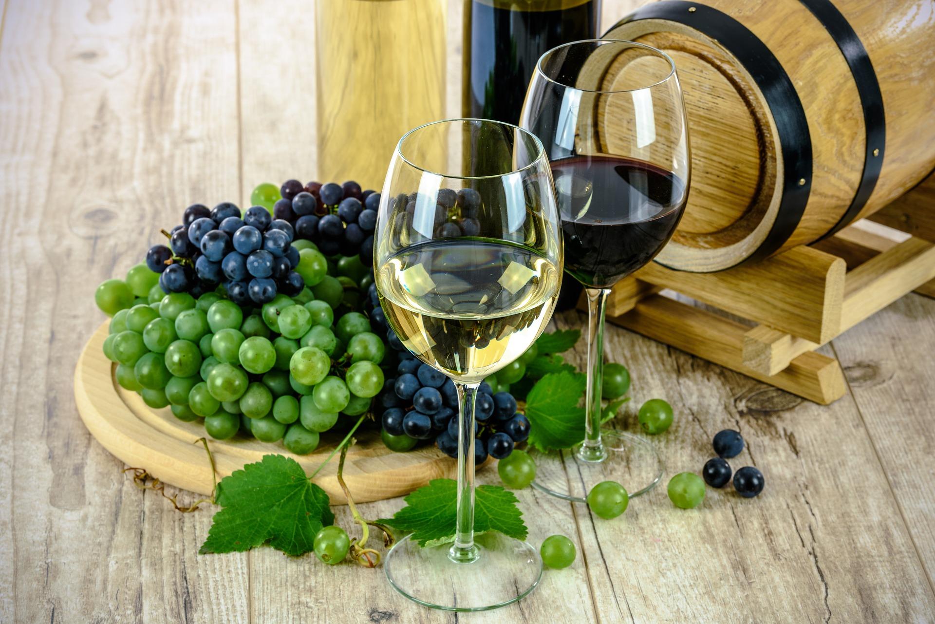 mejores vinos por debajo de 6 euros